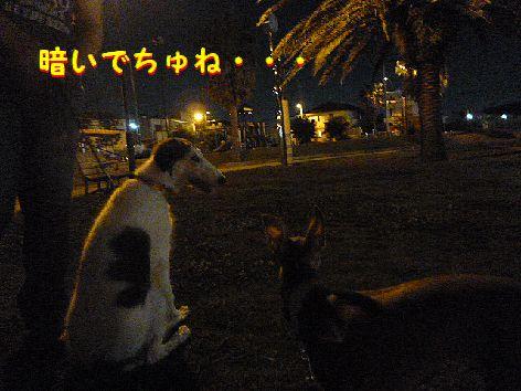 g_20120803073220.jpg