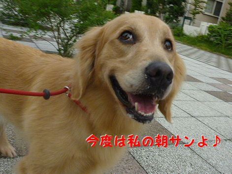 g_20120810073235.jpg