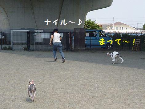 g_20120818095521.jpg