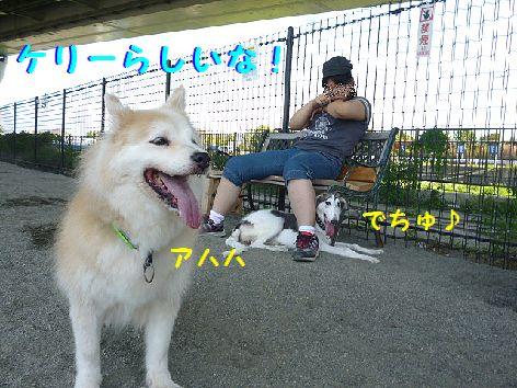 h_20120831072636.jpg