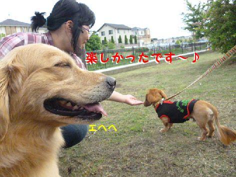 i_20120524065359.jpg