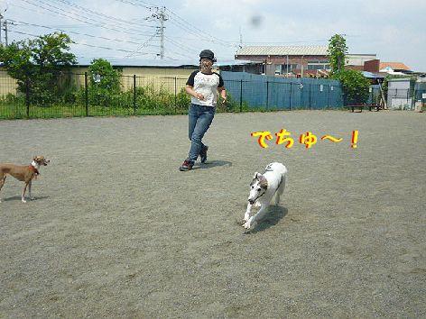 i_20120818095521.jpg