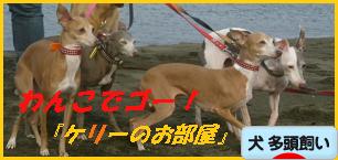 itabana2_20120617081843.png
