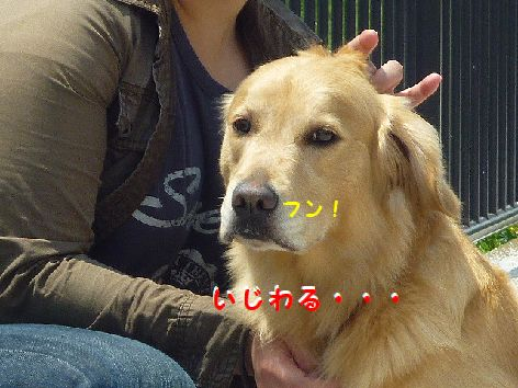 j_20120512102314.jpg