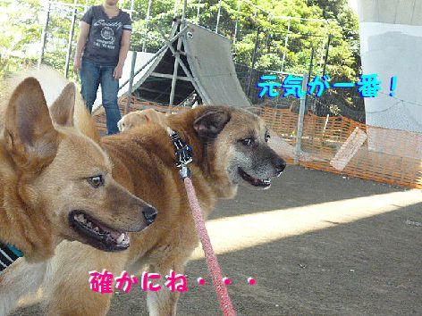j_20120710072236.jpg
