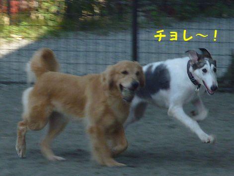 j_20120831072636.jpg