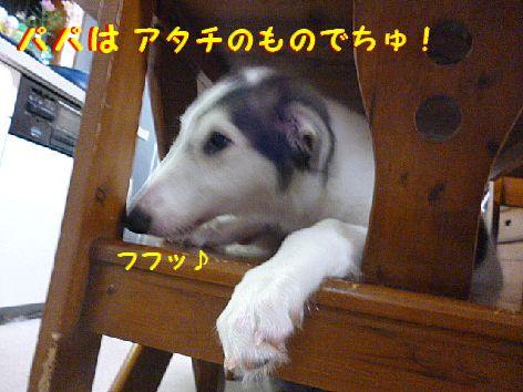 k_20120709072312.jpg