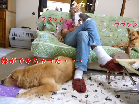 l_20120520072734.jpg