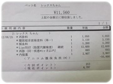 sDSCF0161.jpg