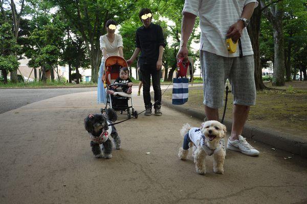 世田谷公園散歩