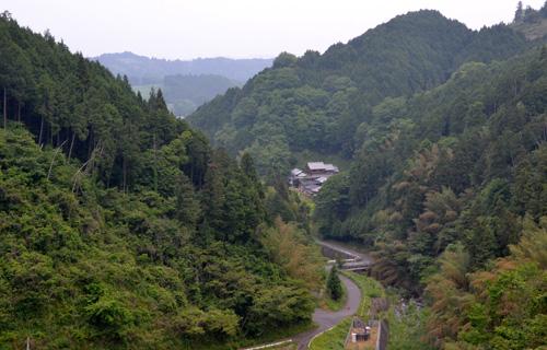 201205_3516.jpg