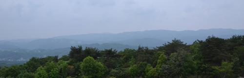 201205_3588.jpg
