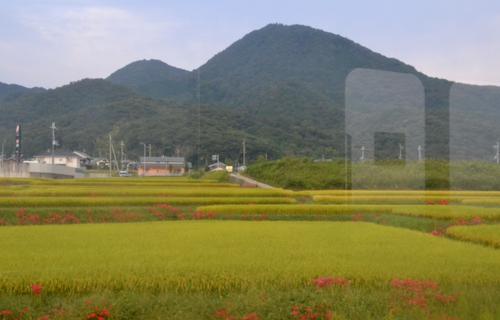 201209_4732.jpg