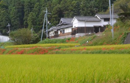 201209_4778.jpg
