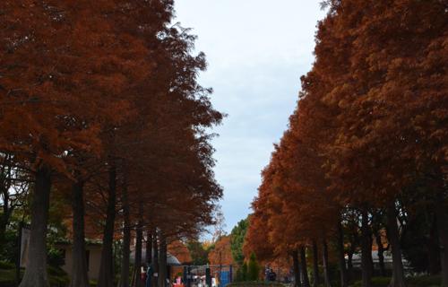 201211_0097.jpg