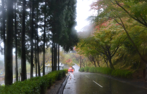 201211_8636.jpg