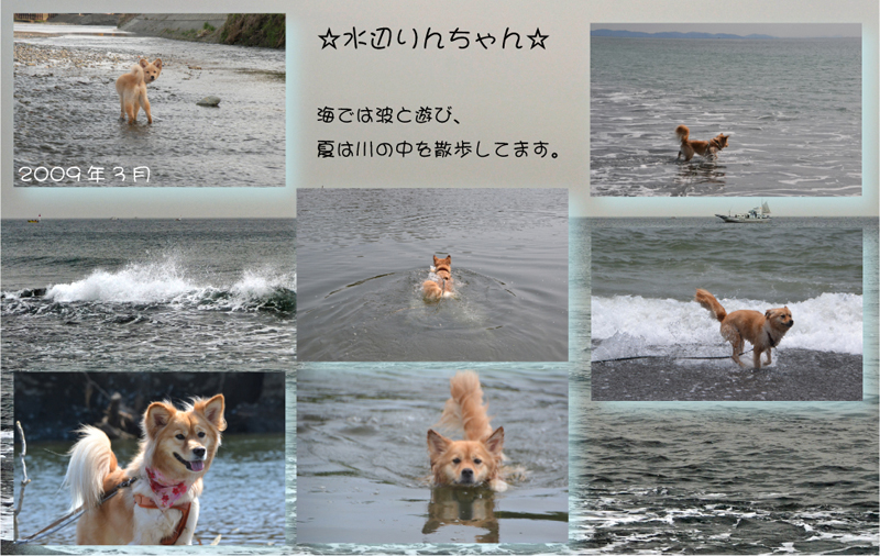 20130124-mizuasobi.jpg