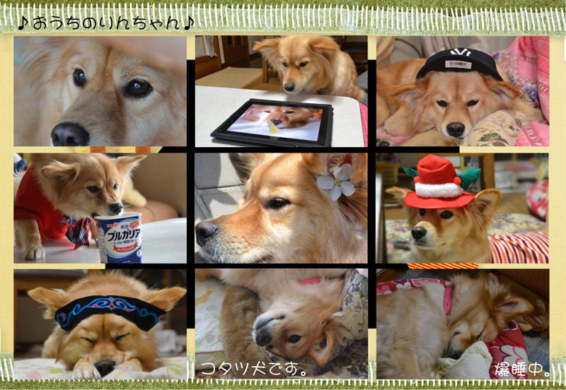 20130124-ouchi.jpg