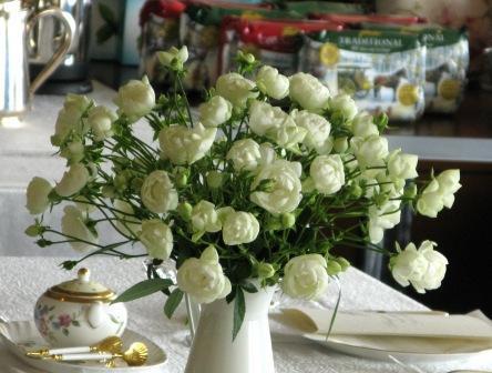 ソラリア花