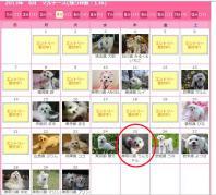 365カレンダー登録4月