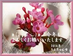 2014年新年挨拶12文字