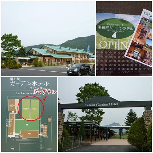 201205139.jpg