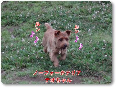 DSC05976.jpg