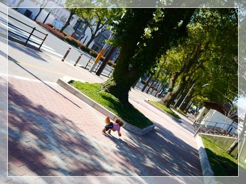 14_20130301164407.jpg
