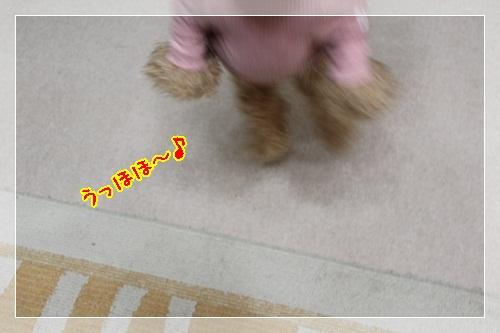 3_20130116232544.jpg