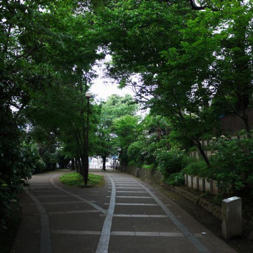 20120602_6d.jpg