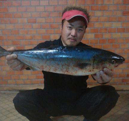 20120425 クニ メジロ 67cm