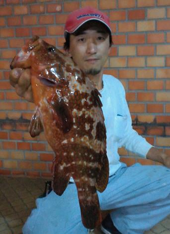 鯉 キジ 20120605
