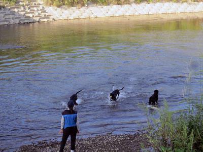 20120917川遊び-1