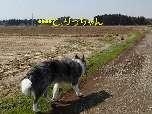 320130410b-5.jpg