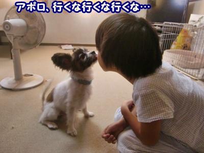 2011_0923_083405-CIMG4999.jpg