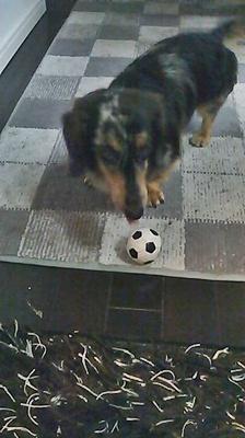 アローとサッカーボール