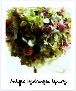 Antique hydrangea top1