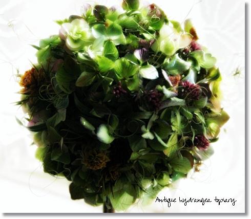 topiary1-1.jpg