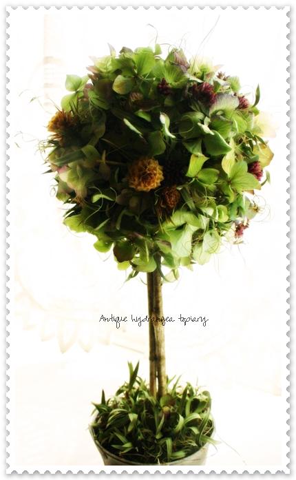 topiary1-7.jpg