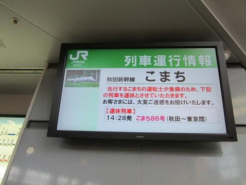 akita-r12.jpg