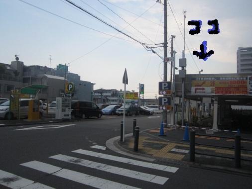 bombaie25.jpg