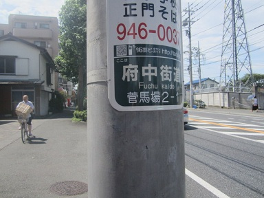 s-ina50.jpg