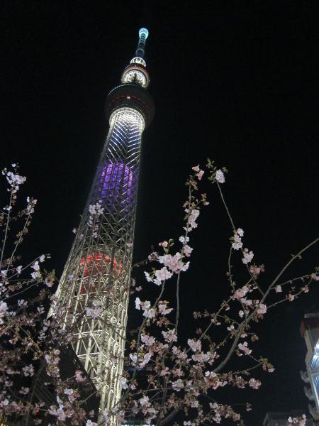 東京スカイツリー・ライトアップ23〔フリー写真〕