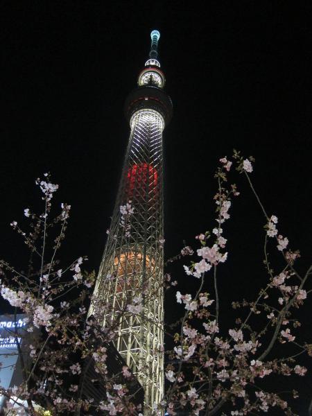 東京スカイツリー・ライトアップ25〔フリー写真〕