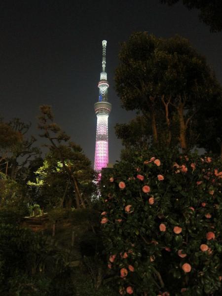 東京スカイツリー・ライトアップ33