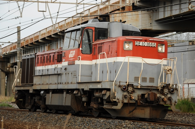DSC_2005_tdn65.jpg