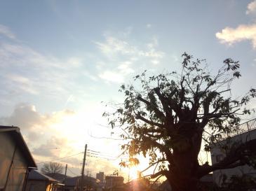 FC2-sunsun.jpg