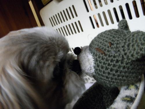 021_convert_20121224123510犬猫5