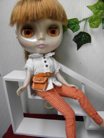 P6150182_convert_20130617123924オレンジ色