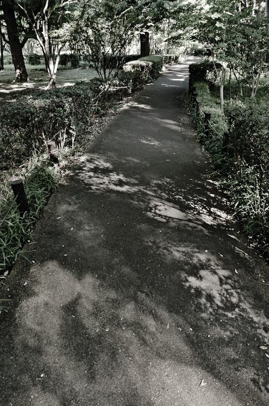 20120717-IMGP4876.jpg